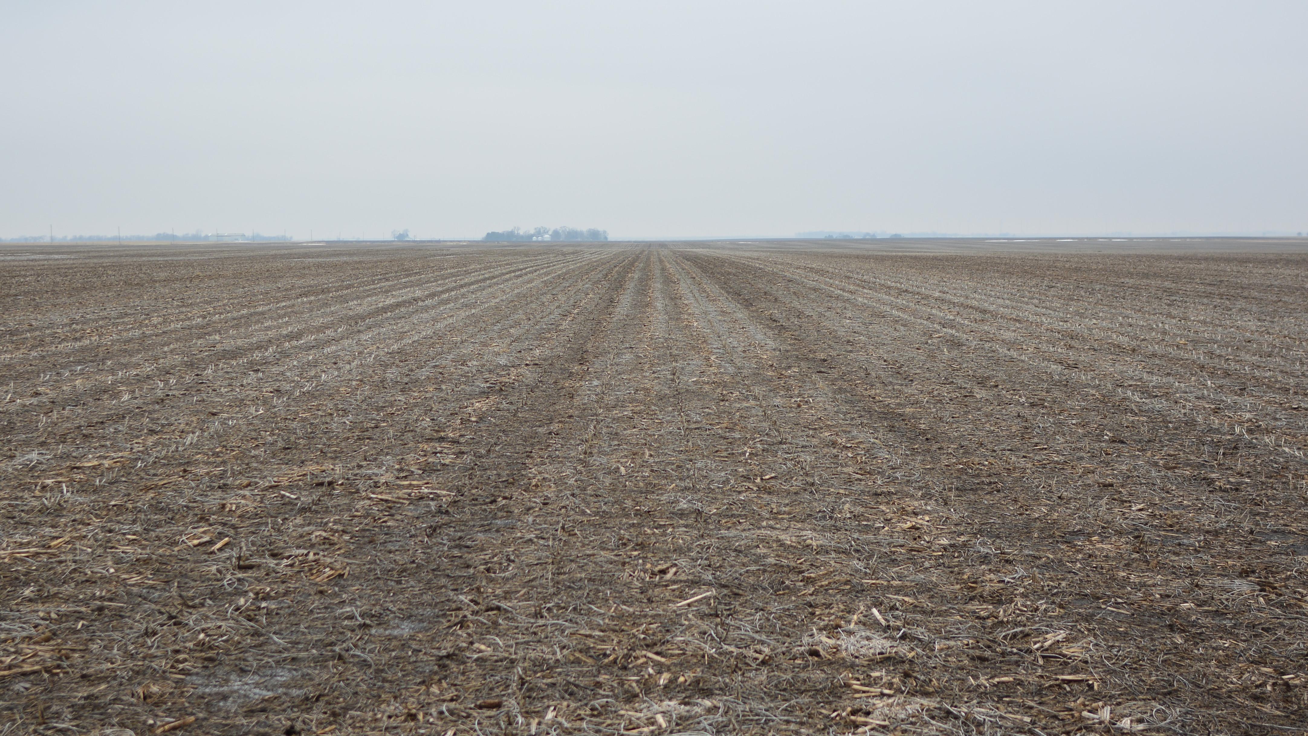 03.20.19 - Iroquois County IL - photo3