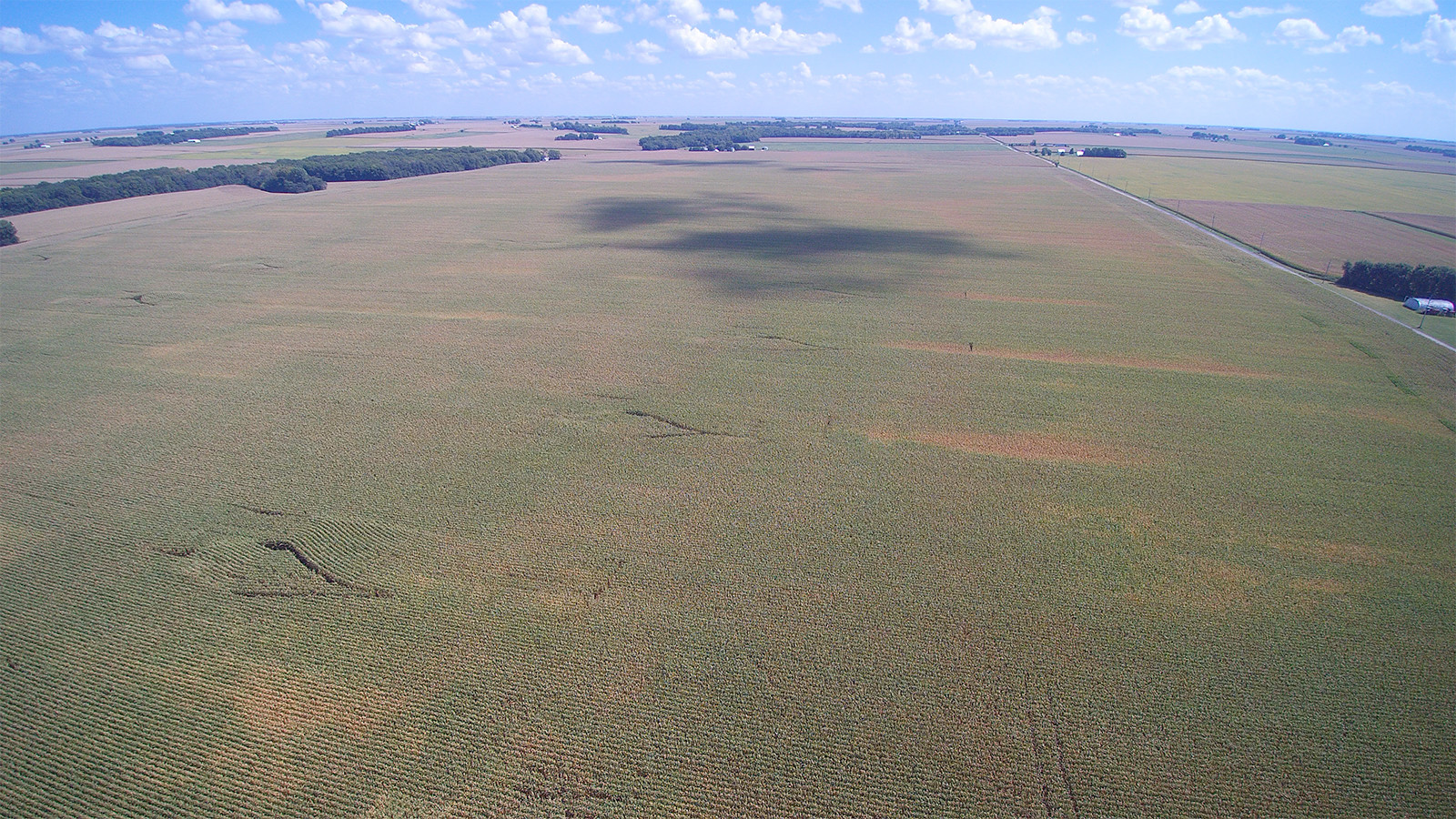Drone 1 - MWA Auctions & Real Estate | Macon Co Farmland Auction 240 Ac - Dec 12 2019