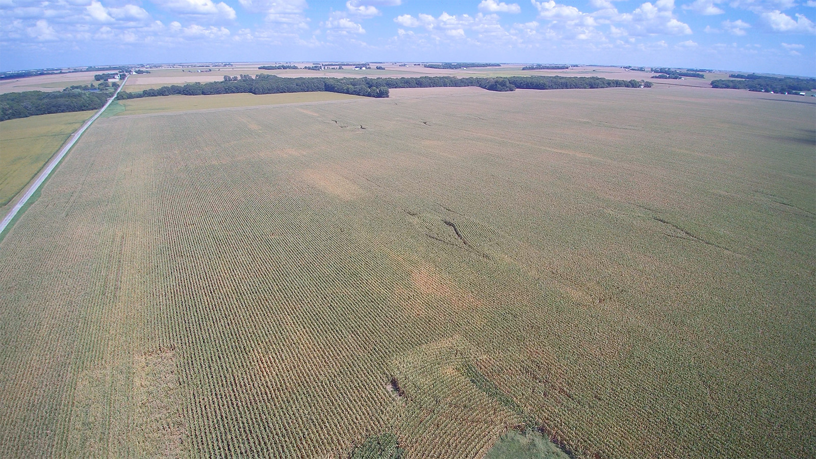 Drone 2 - MWA Auctions & Real Estate | Macon Co Farmland Auction 240 Ac - Dec 12 2019