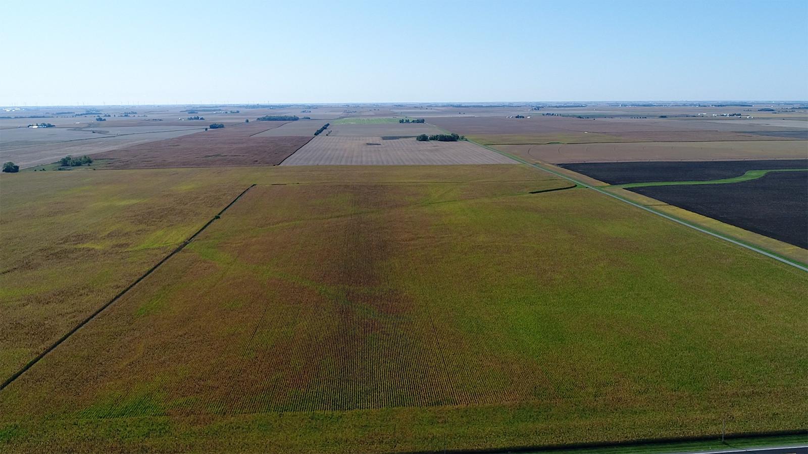 Drone Pic 1 - MWA Auctions & Real Estate | Champaign Co Farmland Auction 100 Ac - Dec 3 2019