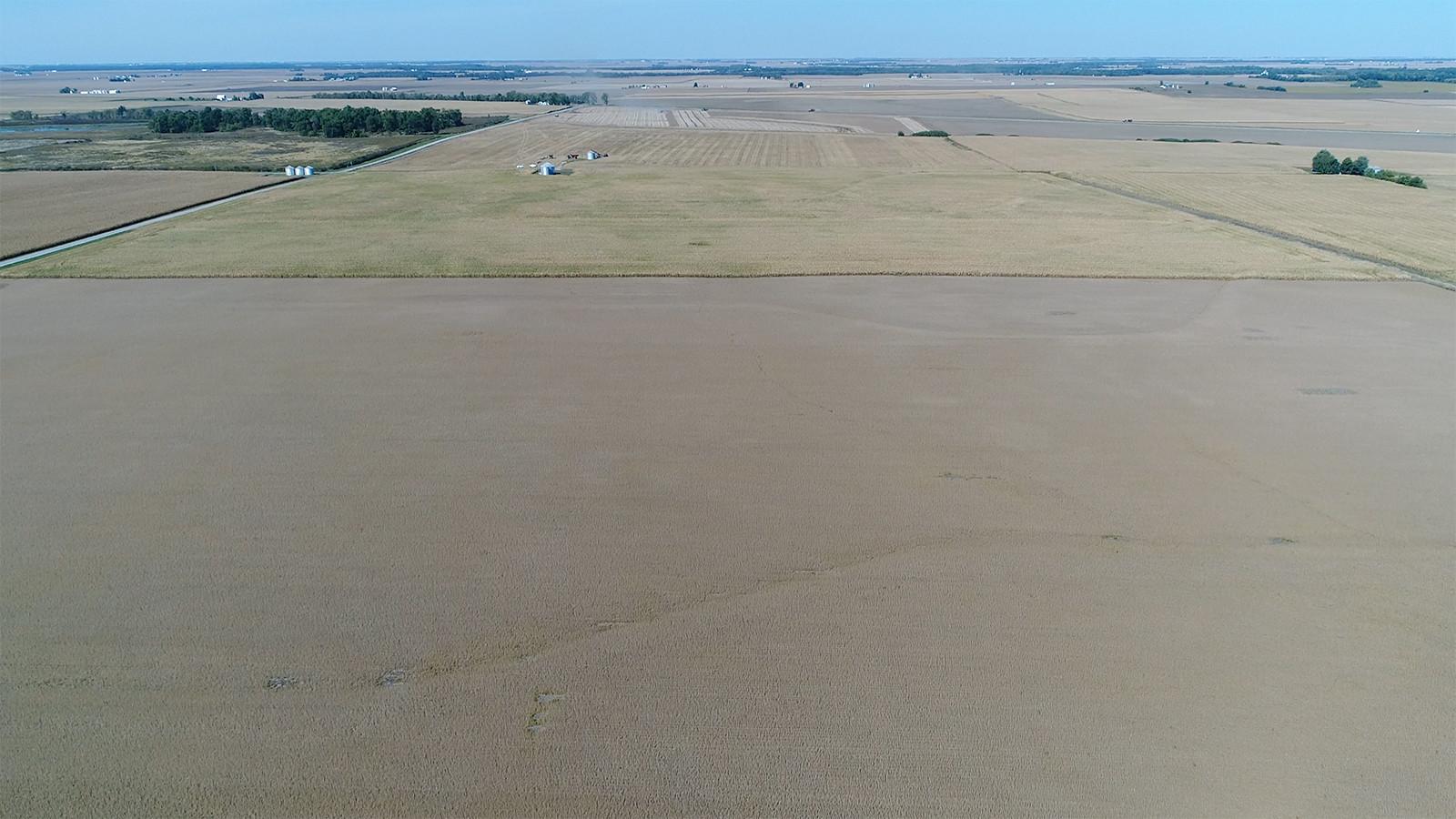 Drone Pic 1 - MWA Auctions & Real Estate | Douglas Co Farmland Auction 196 Ac - Dec 4 2019