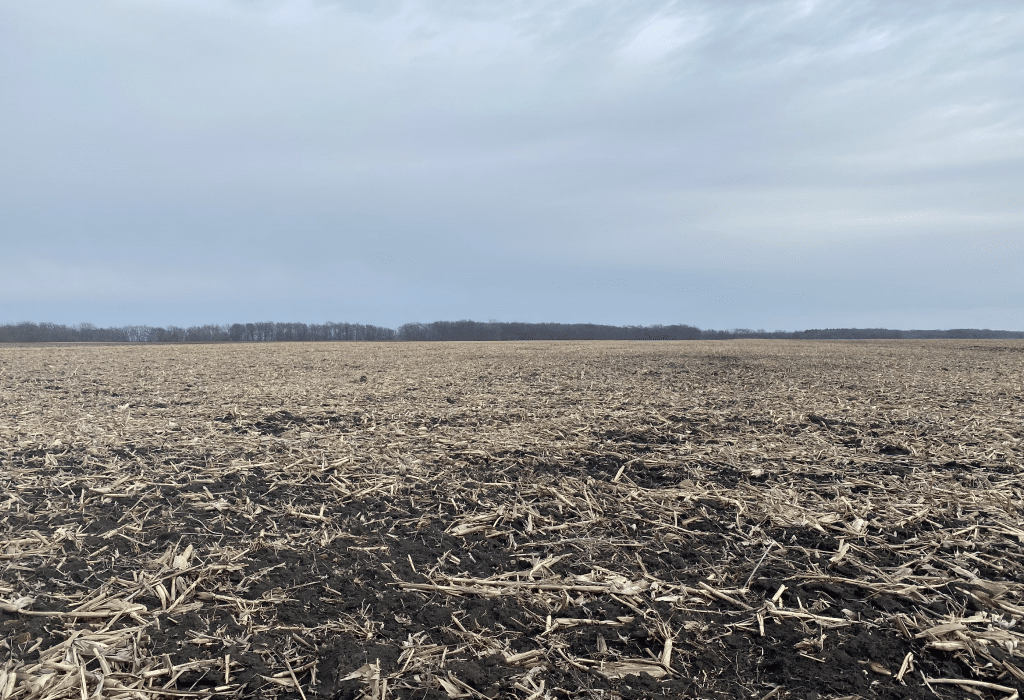 Upcoming AuctionEdgar County, IL - 326± Acres