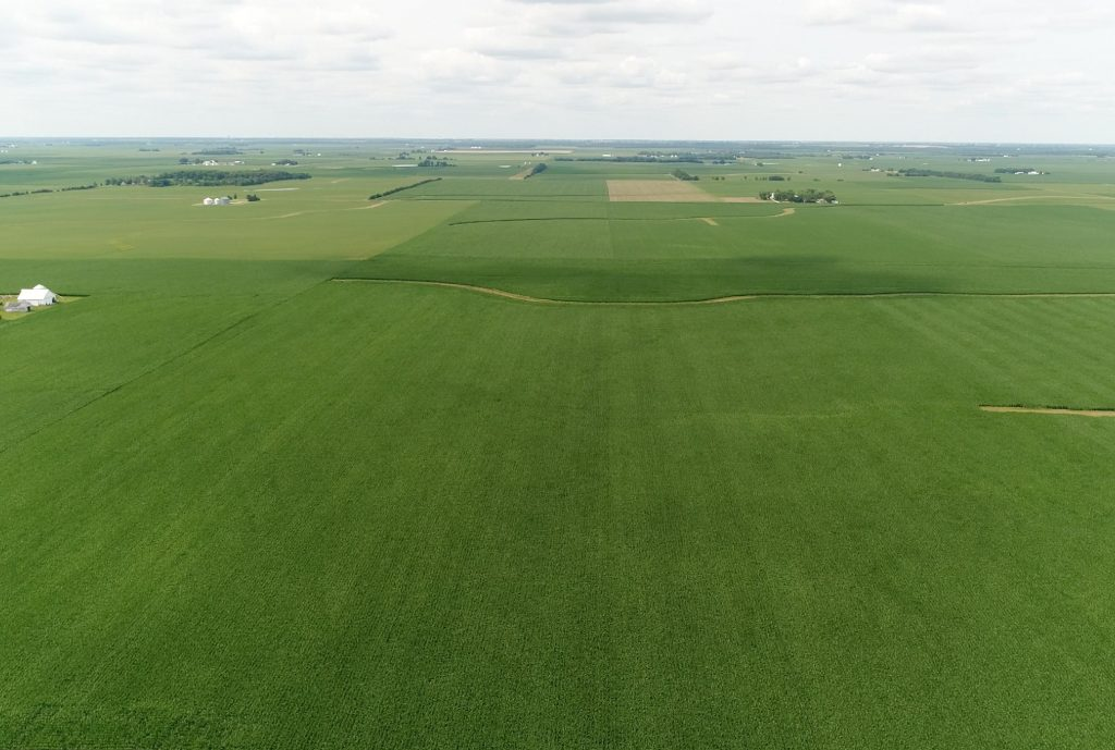 Upcoming AuctionChampaign County - 74± Acres