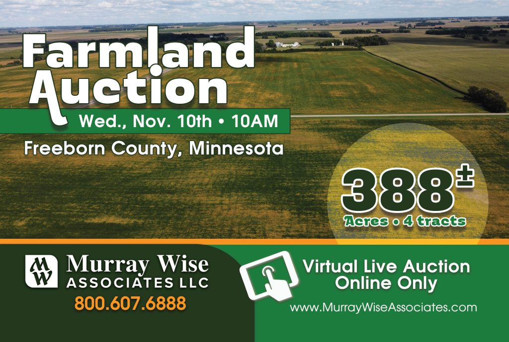 Upcoming AuctionFreeborn County, MN - 388± Acres
